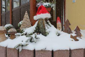 Pfötchenweihnacht @ Wally-Bangert-Tierheim